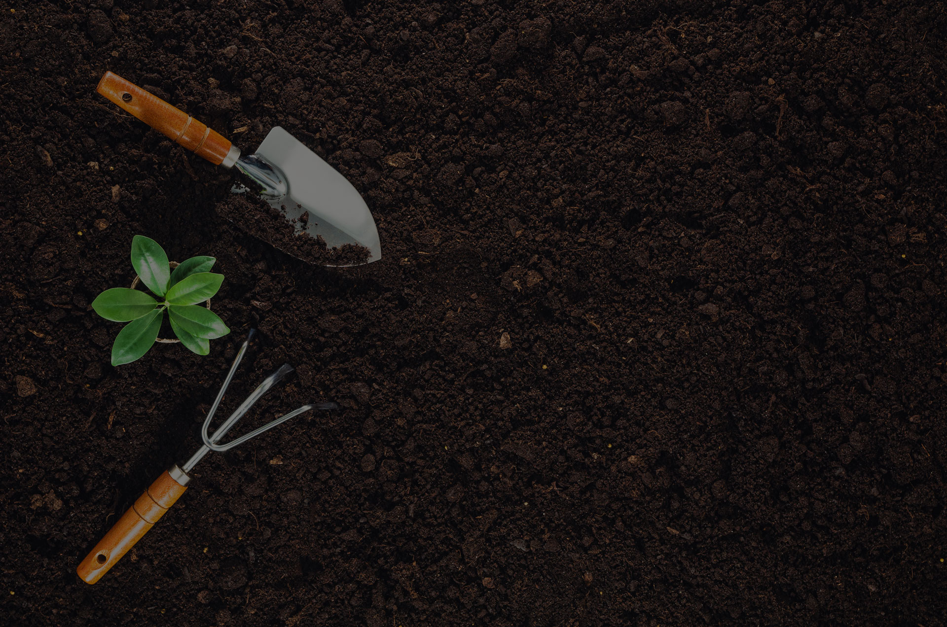 Gardening tools on fertile soil texture background seen from above top view